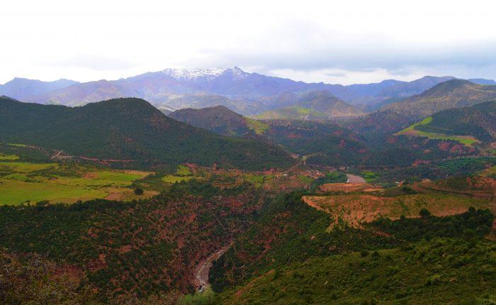 atlas mountains day trip